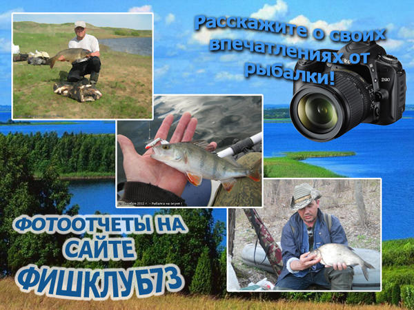 http://www.fishclub73.ru/images/foto_otchety.png